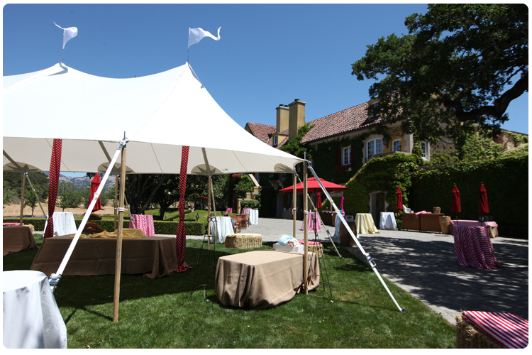 Carnival themed event | carnival tent rentals