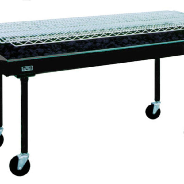 Barbeque-2'-x-5'-grill-charcoal.jpg