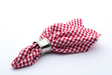 Specialty Napkin-Gingham-Red